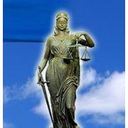Регистрация юридических лиц и физических лиц-предпринимателей ЧП, ООО, ОО фото