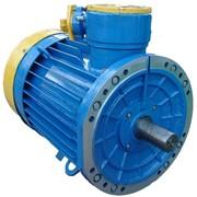 Электродвигатели конвейерные взрывозащищенные серии ВКДВ в габаритах 250, 280, 315 фото