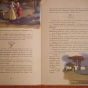 Литературные перевод фото