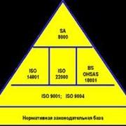 фото предложения ID 17259803