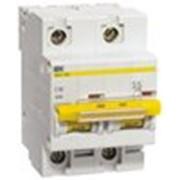 Автоматический выключатель ВА 47-100 2Р 40А 10 кА х-ка С ИЭК фото