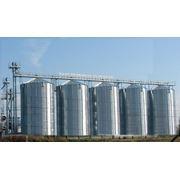 Элеватор для хранения зерна (CHIEF) - для накопления и хранения всех видов зерна (семенного фуражного и продовольственного назначения) влажностью не более 14%.В силосах используется активное вентилирование. фото