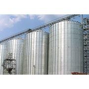 Зернохранилища - цилиндрические силоса фото