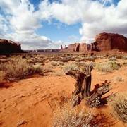 Прогнозная оценка территории на вид полезного ископаемого фото