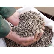 комбикормпшеницазернокупить пшеницуфуражкомбикормпшеницазернокупить пшеницуфуражкомбикорм фото
