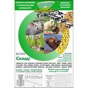 Комбикорма для животных под заказ в Украине Купить Цена Фото Комбикорм для животных под заказ фото