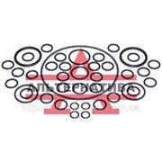 Ремкомплект Гидроагрегатов и арматуры раздельно-агрегатной системы МТЗ-80А/82А/100/102 фото