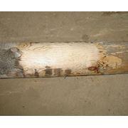 Постоянный (бесцветный) отбеливатель от синевы и черноты древесины 1:2 фото