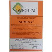 Фосфат пищевой Номина (Е450 Е451 Е452) (Польша) фото