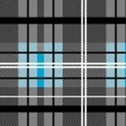 Ткань постельная Фланель 150 гр/м2 150 см Набивная/Клетка цветной 703-1/S301 TDT фото