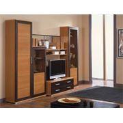 Набор мебели для гостиной фото