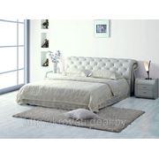 Кровать К630 с основанием (160х200) фото