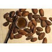 жидкий экстракт какао фото
