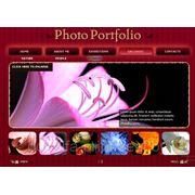 Создание flash сайта фото