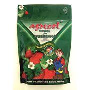 Agrecol Удобрение для клубники и малины 1 кг фото