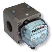 Газовые роторные счетчики DELTA COMPACT G25 ду40 с резьбовым присоединением фото