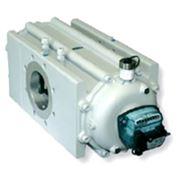 Газовые роторные счетчики DELTA G100 ду80 с фланцевым присоединением фото