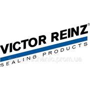 Комплект сальников клапана на Renault Trafic 03-> 2.5dCi (к-т 16 шт) — Victor Reinz (Германия) - 12-31306-01 фото