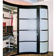Радиусные шкафы-купе фото