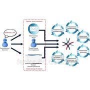 Внедрение системы ведения и учета заявок пользователей фото