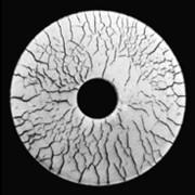 Материалы для магнитопорошкового контроля фото