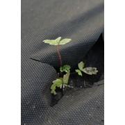 Агроспан черный, шир.3,2 м -150м фото