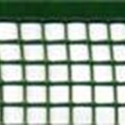 Сетки пластиковые для сада и огорода код Ф ячейка 10х10 фото
