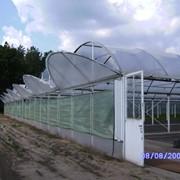 Цены на теплицы Молдова фото