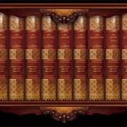 Библиотека для детей 50 томов фото