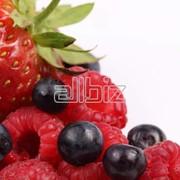 Оптовая и мелкооптовая торговля ягодами фото