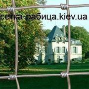 Сетка облегченная ТМ Казачка 100/8/15 фото