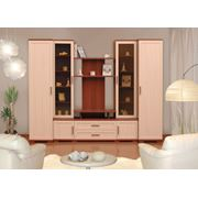 """Мебель для гостиной """"Омега 1"""""""