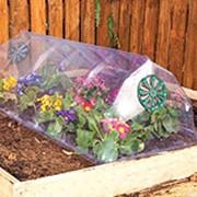 Теплицы садовые фото