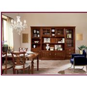 Мебель для гостиной 17 фото