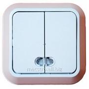 Выключатель 2 кл с подсв. Артикул 25.117 фото