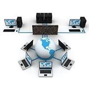 СКС-структурированные кабельные сети фото