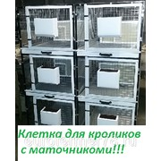 Клетка для разведения кроликов на 6-ть секций ЕвроФермер78 фото