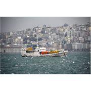 Организация экспортных операций (г.Евпатория - г.Стамбул). фото