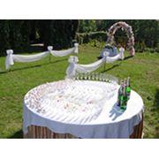 Выездные церемонии бракосочетания фото