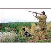 Охота и рыбалка фото