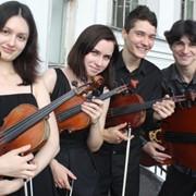 Организация концертов классической музыки фото