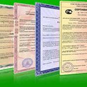 Сертификация системы менеджмента качества фото