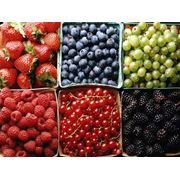 Доставка свежих ягод по Киеву фото