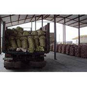 Доставка картофеля по всей Украине фото