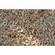 Щепа топливная Щепа биотопливо wood chips Щепа на экспорт Щепа от производителя фото