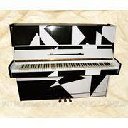 Настройка пианино и роялей, все виды ремонта, регулировка механики фото