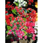 Посадка цветов на месте захоронения фото