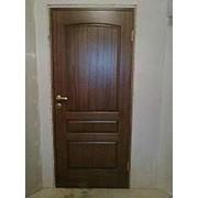 Дубовая дверь фото