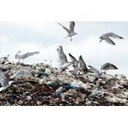 Оксизин для переработки бытового мусора утилизация мусора с применением Оксизина фото