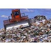 Сбор вывоз и захоронение бытовых отходов фото